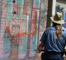 Graffiti Removals Sydney